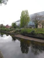 The Sandymount Hotel Dublin 4 Hotel right beside Aviva Stadium