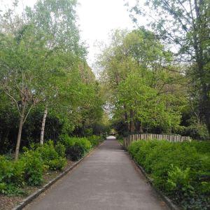 Merrion Square Dublin Lisa Hughes blog